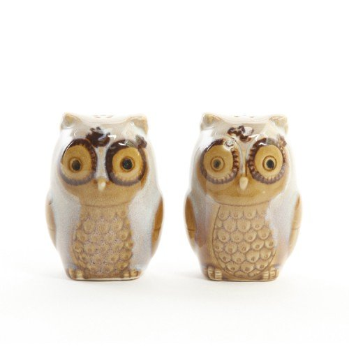 Natures Cream Owl Salt and Pepper Shaker Set ~ Stoneware