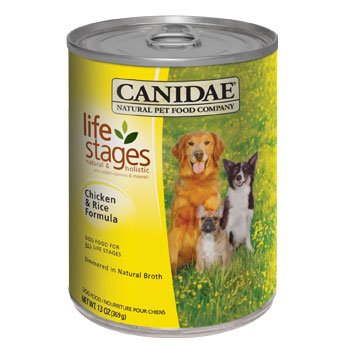 Dog Life Stages front-982721