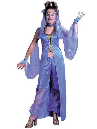 Dreamy Genie Costume Plus Size Theatre Costumes Sizes: One Size image