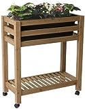 Algreen 32102 Ergogarden Elevated Garden Bed System