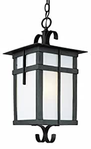 Trans Globe Lighting 5286 BK 21-Inch 1-Light Outdoor Large Hanging Lantern, Black