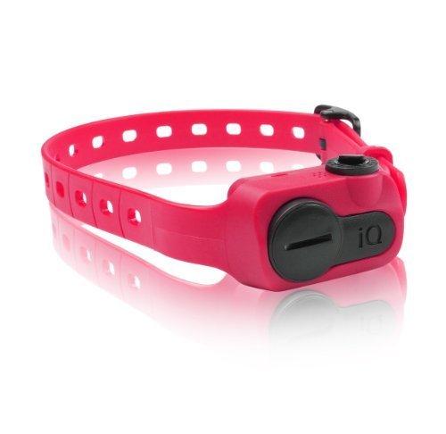 Dogtra Iq No Bark Collar, Pink By Agm Distribution