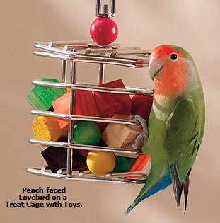 Image of Treat Cage Large w/Toys 8-3/4