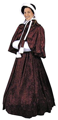 Dickens Dress Adult Womens Costume (Dickens Dress)