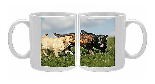 Photo Mug Of Yellow, Black And Chocolate Labrador - Playing With Toy front-571625