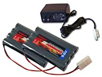 Combo: 2 pcs Tenergy 9.6V 2000mAh NiMH High Capacity Battery Packs + 12V 300mah Simple Pack Charger (for 6.0V-9.6V packs) for RC Car, Robots, Security by Tenergy