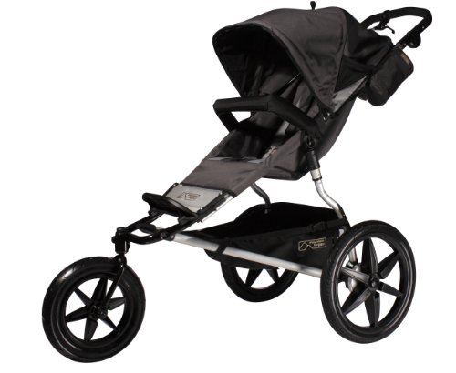Mountain Buggy 2013 Terrain Stroller (Flint)