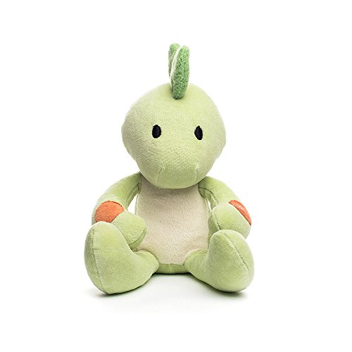 Dinosaur-Stuffed-Animal-Organic-Dinosaur-is-a-Non-Toxic-Bears-for-Humanity-12-PlushToy