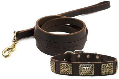 """Dean And Tyler Bundle - One """"Drum Roll"""" Collar Brass 34"""" By 1-1/2"""" With One Matching """"No Assumptions"""" Leash, 6 Ft Solid Brass Snap Hook - Brown"""
