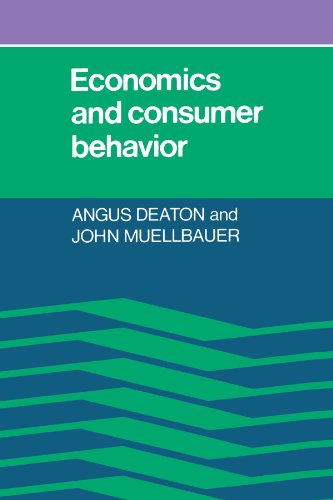 Economics and Consumer Behavior Paperback