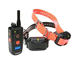Dogtra Outdoor Yard Pet Dog Advanced 2 Dog 3 4 Mile Remote Trainer by Dogtra