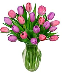FROM YOU FLOWERS - Pink and Purple Tulips - 20 Stems (FREE Vase Included)