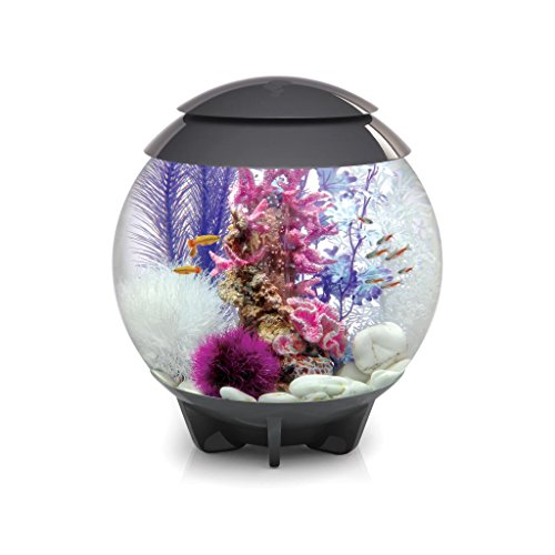 biOrb HALO 30 Aquarium with Moonlight LED Light - 8 Gallon, Grey