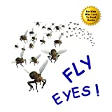 Fly Eyes: Cool Facts about the Eye of the Fly to Impress Your Parents, Gross Out Your Little Sister, and Amaze Your Friends (A Picture Book for Readers Aged 8 and Up)