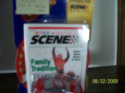 Dale Earnhardt Jr. #8 Winners Circle Nascar Deluxe Winston Cup Scene Series. - 1