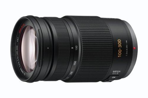 Panasonic H-FS100300E Lumix G Telezoom Lens (100-300 mm, F4-5.6 O.I.S)