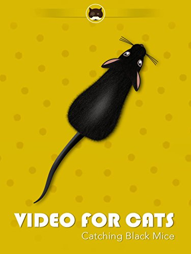 Video for Cats Catching Black Mice