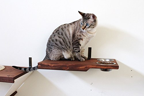 CatastrophiCreations Cat Dining Table - Handcrafted wall-mounted Feeder Shelf