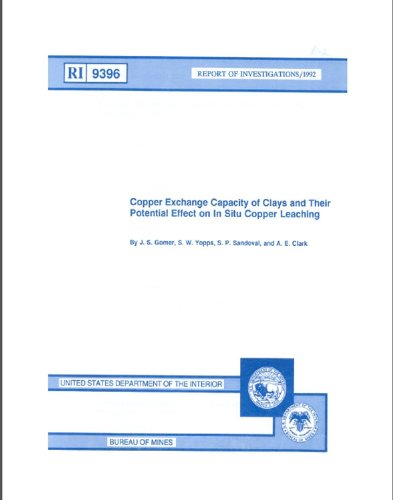 Copper Exchange Capacity of Clays and Their Potential Effect on In Situ Copper Leaching