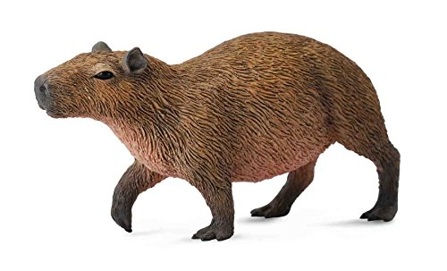 CollectA Capybara Figure