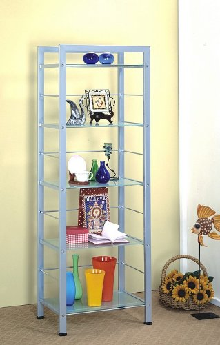 Modern Contemporary Metal and Glass 5-Tier Bookcase Shelf