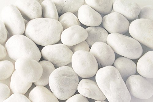 carrara-gravier-15-25-mm-20-kg-marbre-blanc-splitt-gabion-splitt-decoratif-gabio-nen-garnissage-de-j