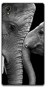 The Racoon Grip printed designer hard back mobile phone case cover for Sony Xperia Z1. (Elephants)