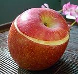 りんごシャーベット5個セット(青森産・高級リンゴ『ふじ』まるごと使用のシャーベット)