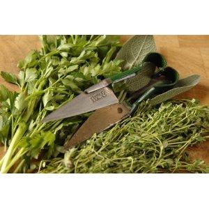 Secret Garden Burgon and Ball Herb Snips/ Shears