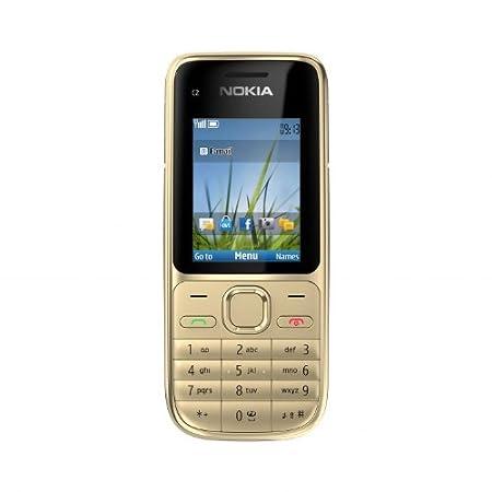 T�l�phone GSM NOKIA C201 GRIS