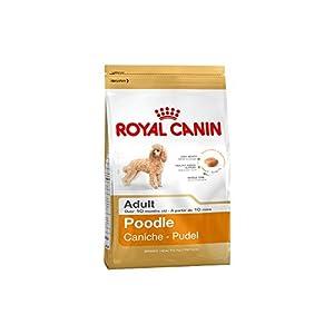 royal canin 35136 breed pudel 1 5 kg hundefutter haustier. Black Bedroom Furniture Sets. Home Design Ideas