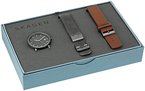 skagen-mens-skw1081-hagen-mesh-watch-and-leather-strap-box-set
