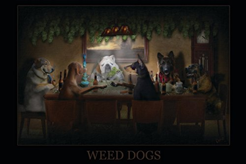 Weed-Dogs-Pot-Marijuana-College-Poster