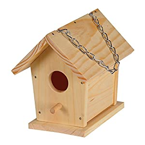 Amazon.com : Build a Bird House : Childrens Wood Craft Kits : Patio ...