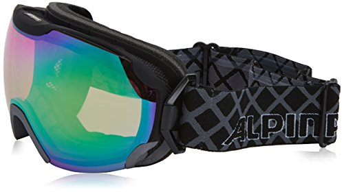 ALPINA Pheos QMM Skibrille/Snowboardbrille, Modell 2016