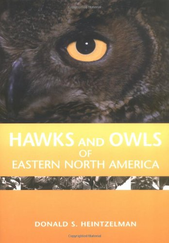 Hawks and Owls of Eastern North America PDF