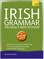 Irish Grammar You Really Need to Know: Teach Yourself (Teach Yourself Language Reference) (English Edition)
