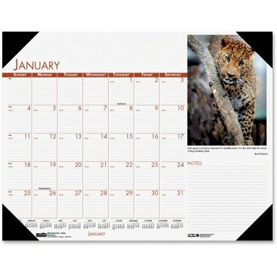 House of Doolittle Beautiful Wildlife Photographic Monthly Desk Pad Calendar, 22 x 17, 2013 korean kawaii cute school office supplies daily weekly monthly plan desk note pad memo pad planner agendas checklist