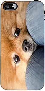 Snoogg Chihuahua Haha Designer Protective Back Case Cover Forapple Iphone 5 / 5S