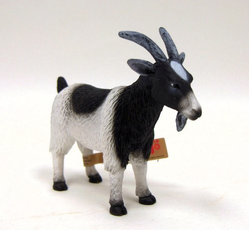 Black/White Goat by Mojo