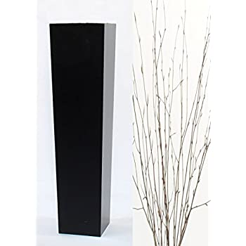 Tapered Floor Vase, Natural Beech Branches