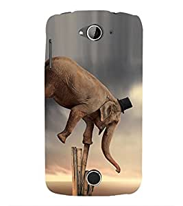 Vizagbeats Circus Elephant Back Case Cover for Acer Liquid Z530