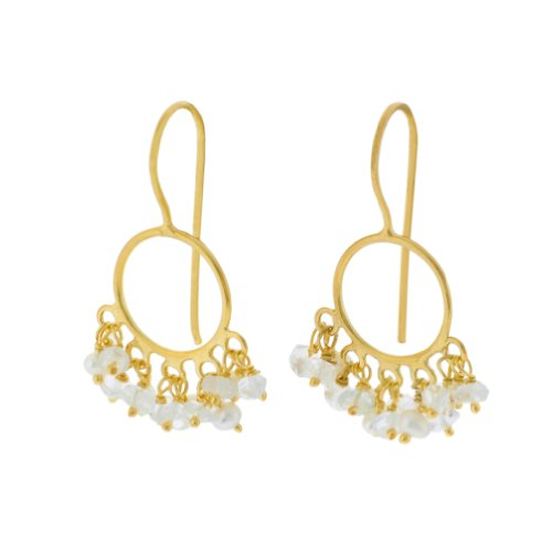 Pomegranate Vermeil Crystal And Pearl Small Circle Earrings