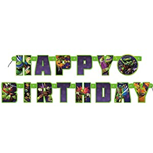Teenage Mutant Ninja Turtles Birthday Banner, 12'