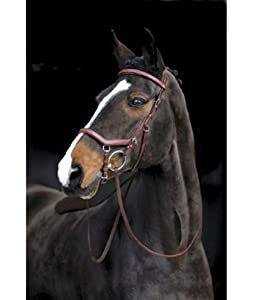 Rambo Micklem Comp Bridle/rein, Tobacco /Pony