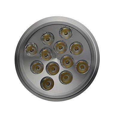 Rayshop - Dimmable Ar111 E27 12W 1300Lm 6000K Cool White Led Spot Lamp Light(Ac100-130V)