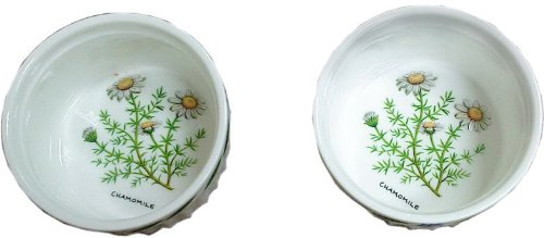 HERB GARDEN SET OF 2 4