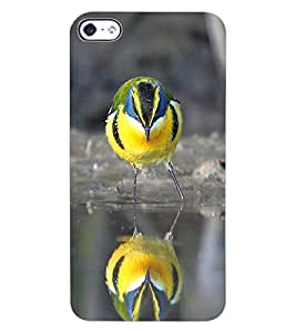 ColourCraft Cute Bird Design Back Case Cover for APPLE IPHONE 4S