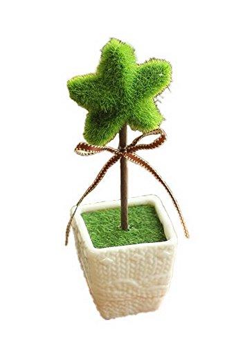 Home Furnishing Decoration Small Bonsai Plants Small Ornaments - Star