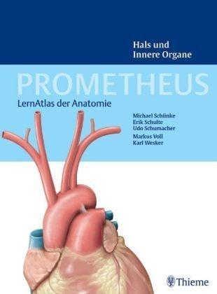 Prometheus. LernAtlas der Anatomie. Innere Organe, 2. Auflage
